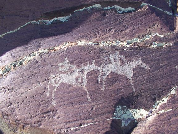 horses and riders, Mongolia, ancient rock art