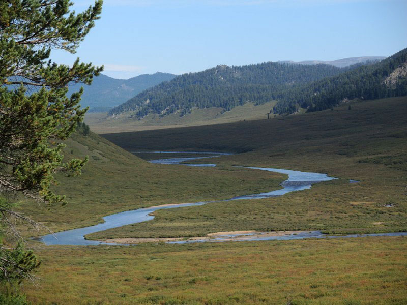 Mongolia Wilderness Horse Riding Tour, Horse Trails Mongolia, Hidden Trails Mongolia, Equestrian Tours Mongolia
