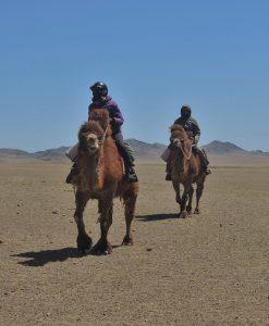 Winter Camel Trekking in the Gobi