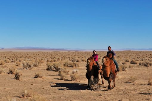 Gobi Crossing, Adventure Travel in Mongolia
