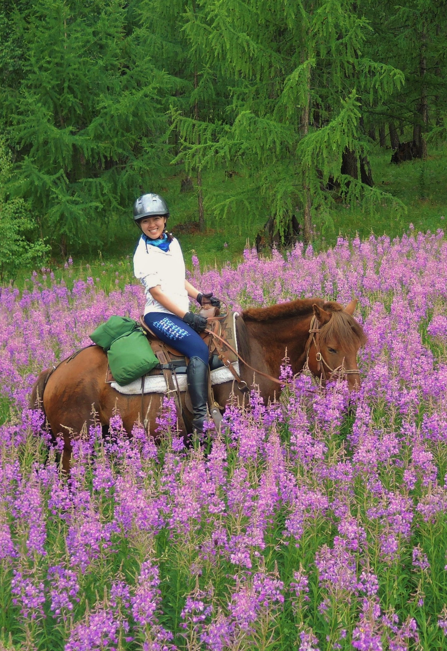2020 Mongolia Horse Riding Tours
